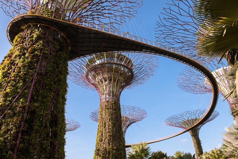 Singapur, Supertrees, Gardens by the Bay, Skyway, Highlights